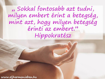 pasztorpuli.hu :: tanulmányok