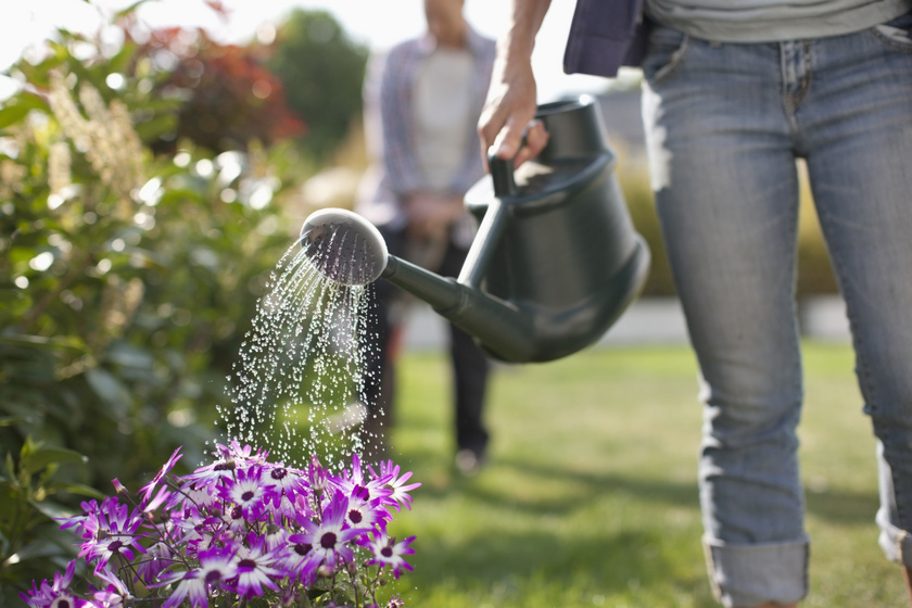 Mennyi sportot jelent 1 óra kertészkedés?
