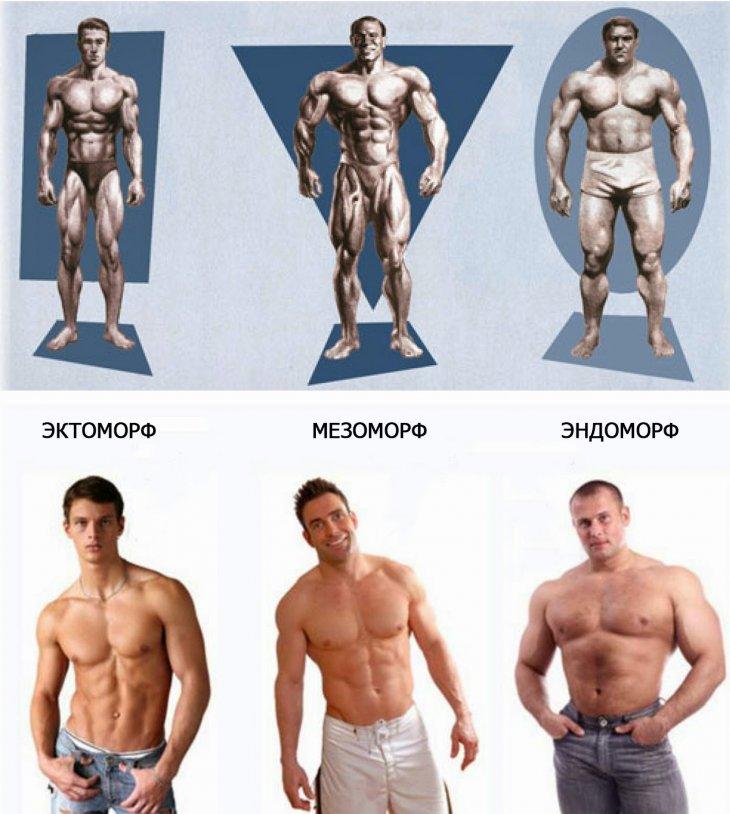 Testtípus fogyáshoz Táplálkozás és edzés testtípus szerint