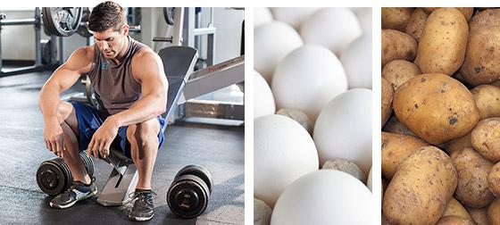 Zsírégetés, mint üzemanyagforrás, A reggeli kardió edzés több zsírt éget el? - GymBeam Blog