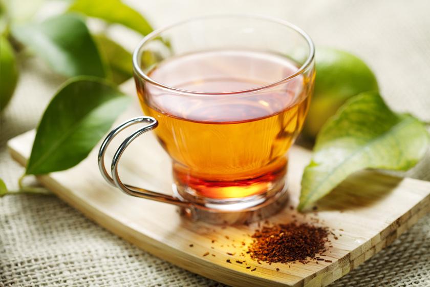 a rooibos tea okoz-e fogyást fogyni pennington nj