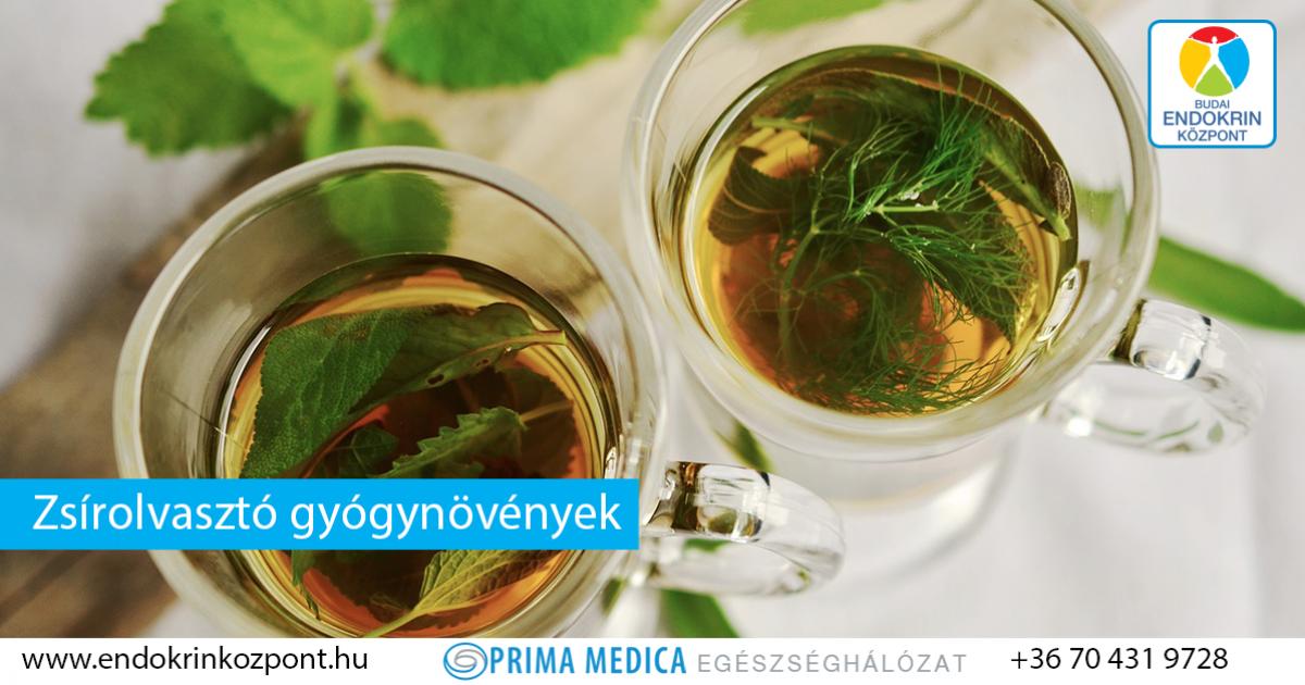 Öt gyógynövény, amelyek segítenek a fogyásban | Magyar Nemzet