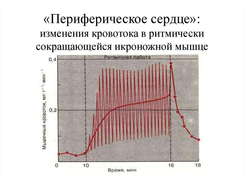 foci a zsírvesztéshez h pylori képtelen fogyni