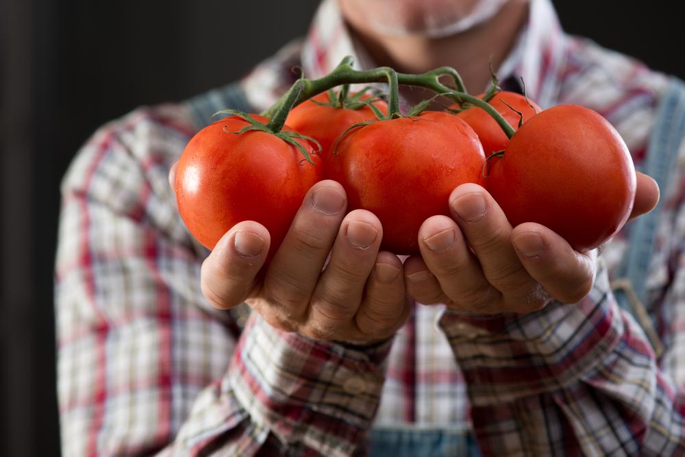 Lila sárgarépa jó a fogyáshoz. Saláta káposzta és répa fogyás