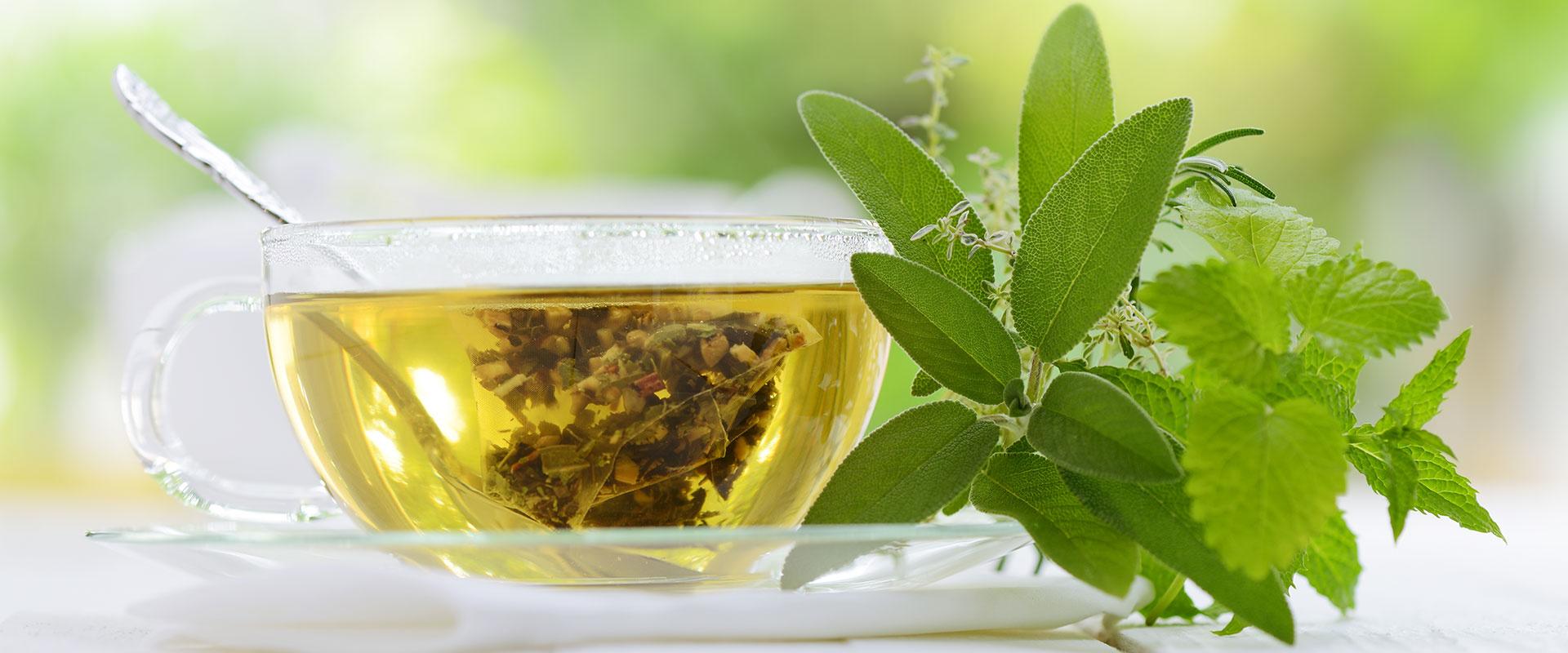 A tea előnyei: fogyás, egészséges csontok és jobb hangulat | Gyógyszer Nélkül