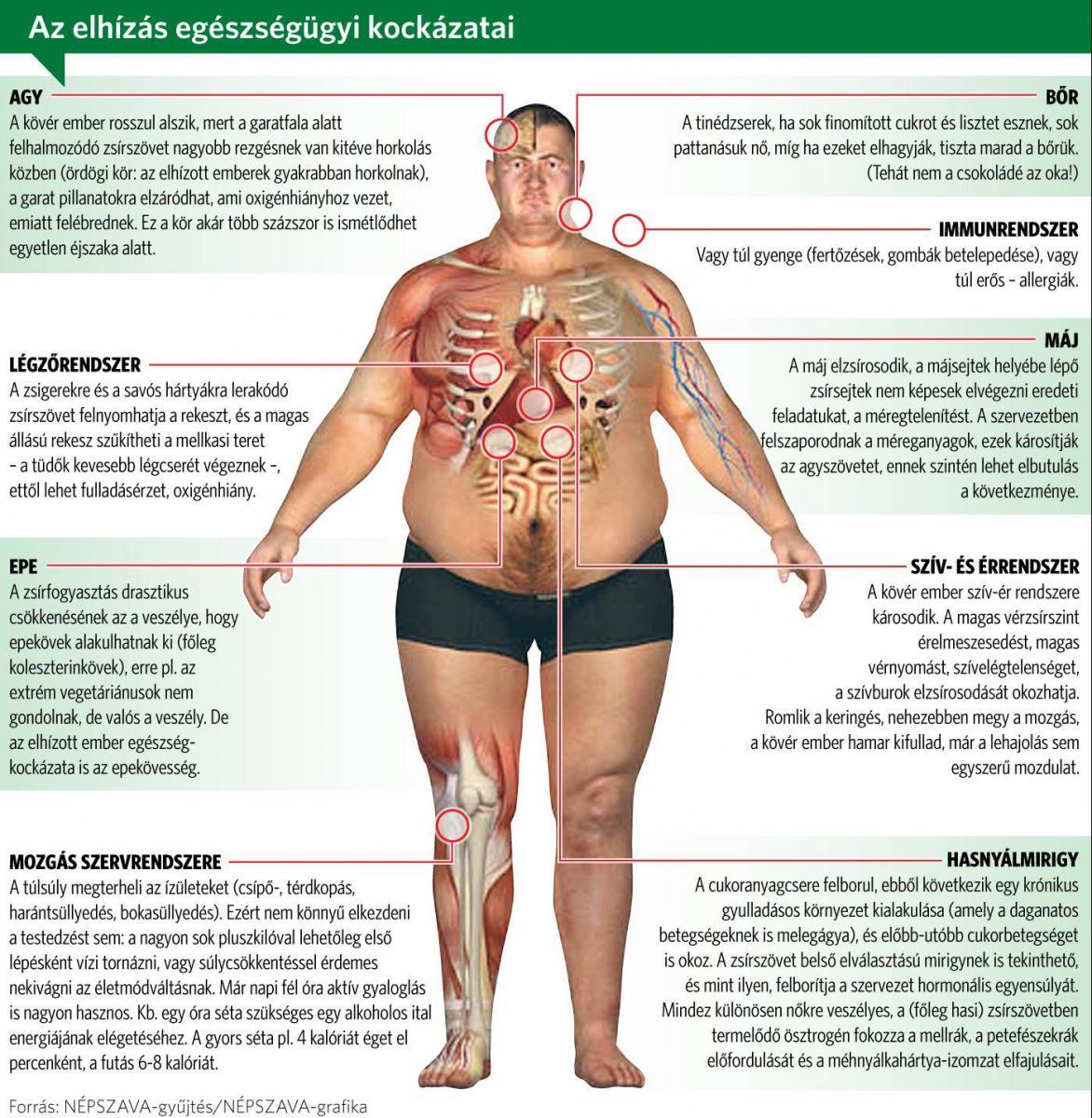 hogyan lehet gyorsan elveszíteni a mellüregi zsírt