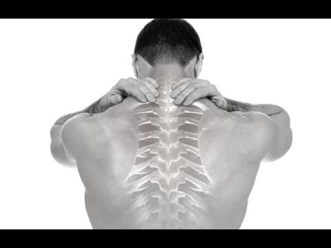 Elveszíti a hát felső részét - Funkcionális anatómia I. | Digitális Tankönyvtár