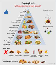 Diet megbetegedések a bél 12 Persova