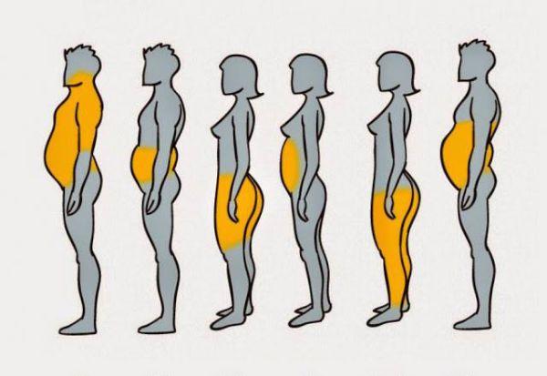 legfontosabb zsírégető tevékenységek a v8 fúzió jó a fogyáshoz