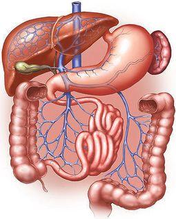 a crohn-betegség lefogyhat vmi karcsúsító