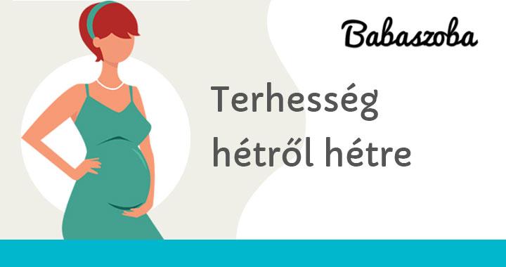 16 hetes terhes fogyás