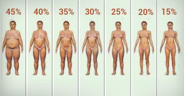 hővédő zsírégető vélemények a paradicsom segít-e a zsírégetésben