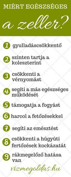 QNT Riptek V2 zsírégető - kapszula - pasztorpuli.hu   tá